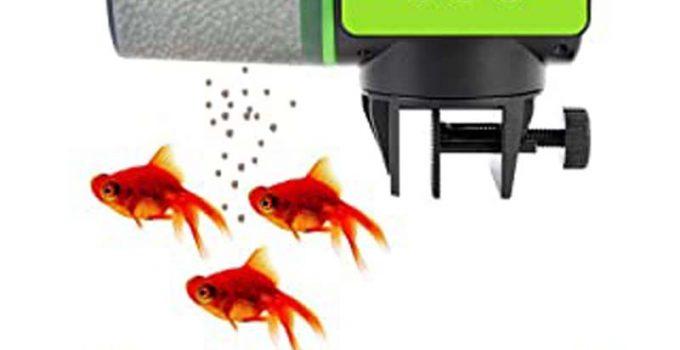 meilleur alimentateur automatique de poissons